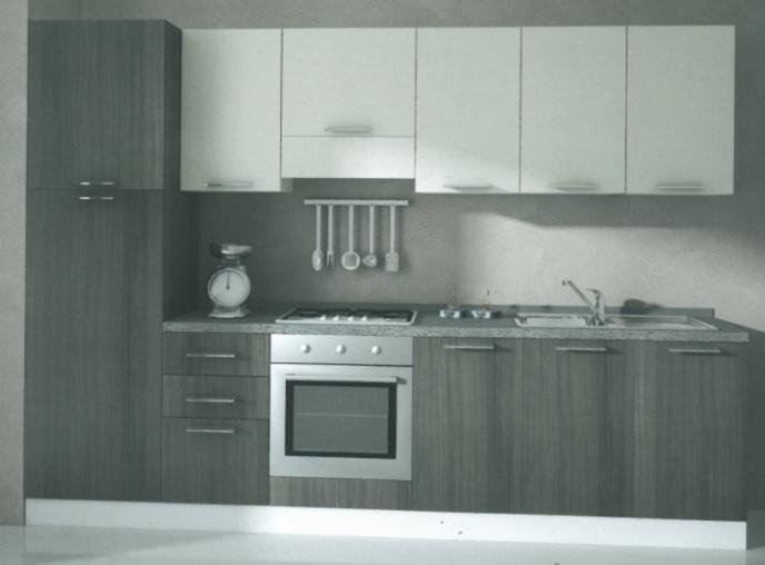 Cucina componibile moderna aloe 3006 cucine a prezzi - Elementi cucina componibile ...