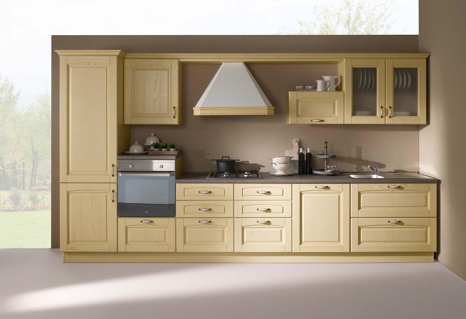 Cucina lineare in stile classico con elettrodomestici for Cucina in stile ranch