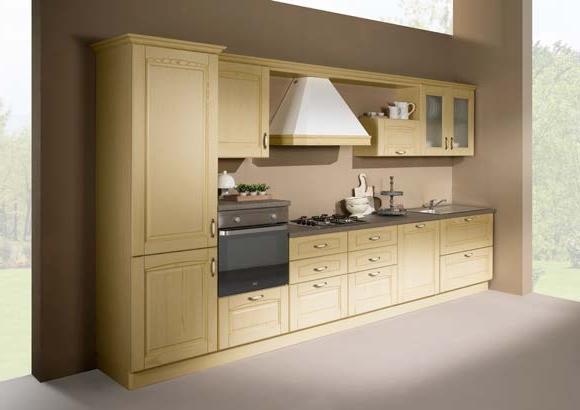 Cucina lineare in stile classico con elettrodomestici - Cucina con elettrodomestici ...