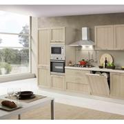 netcucine cucina lineare in stile contemporaneo con elettrodomestici inclusi cod 08 spedizione gratuita