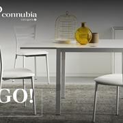Sedia Connubia modello Go! Sedia con struttura in metallo bianco ottico opaco e sedile in faggio bianco ottico.