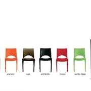 sedia in polipropilene vari colori!
