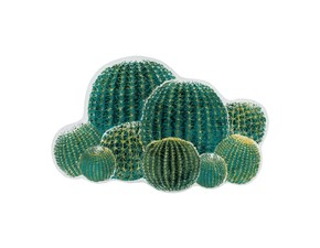 Tappeto sagomato  moderno Cactus Abyss & habidecor in Offerta Outlet